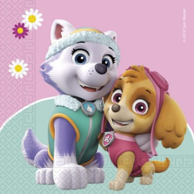 Paw Patrol Skye & Everest Servetter 20st